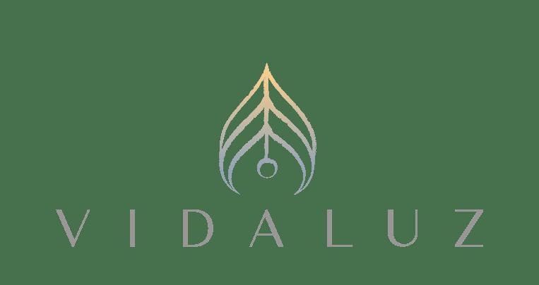 Logo-1_VidaLuzCaseStudyPage