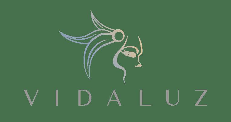 Logo-2_VidaLuzCaseStudyPage
